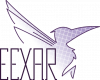 cropped-EEXAR-Original-Vertical-Transparency.png